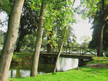 The bridge in the park
